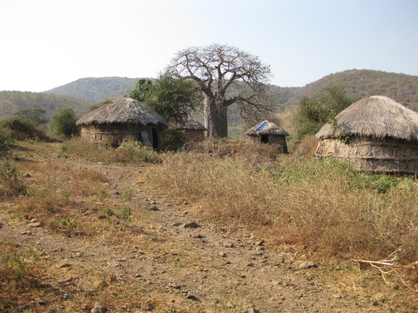 A Maasai village just outside Karatu